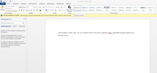 Abbildung 5: Geschütztes Word-Dokument in Word geöffnet